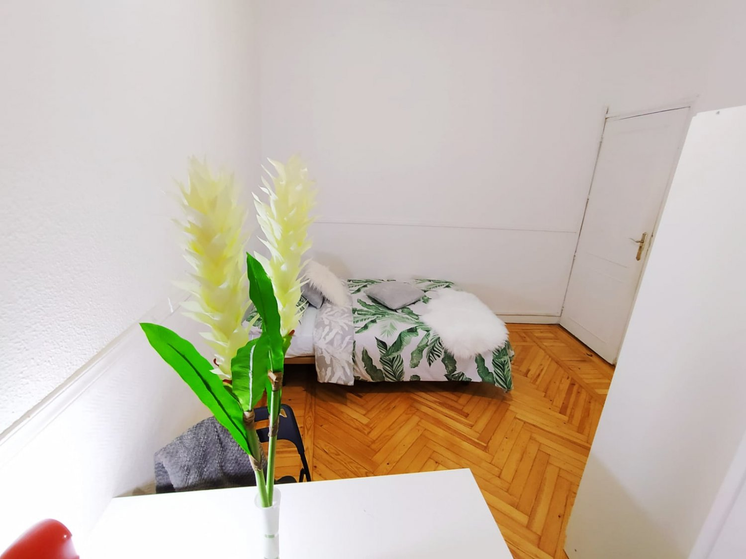 Erasmus rooms in Madrid – Arguelles – ARGB7