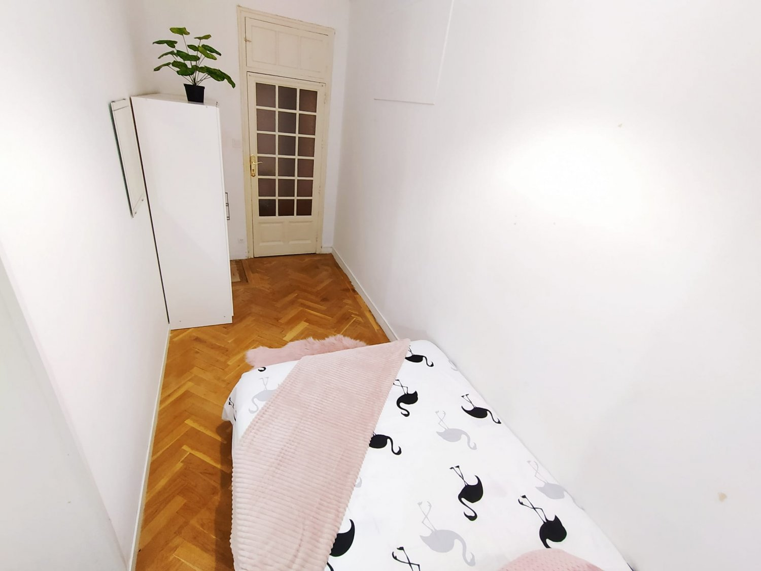 Accommodation for Students Madrid- Arguelles – ARGA6